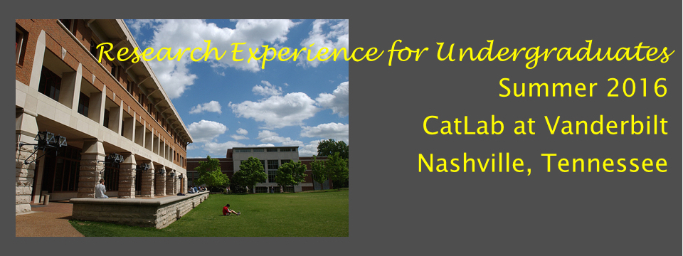 Research Experience for Undergraduates (REU Summer 2016)
