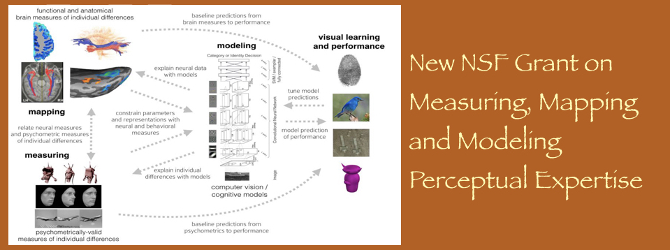 New NSF Grant on Measuring, Mapping, and Modeling Perceptual Expertise