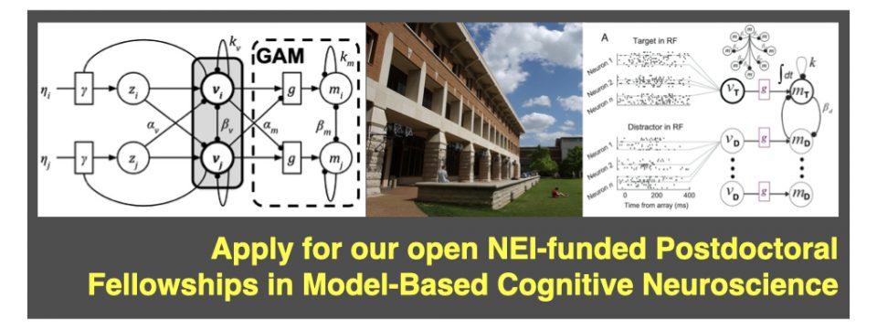 Postdoctoral Fellowship in Model-based Cognitive Neuroscience at Vanderbilt